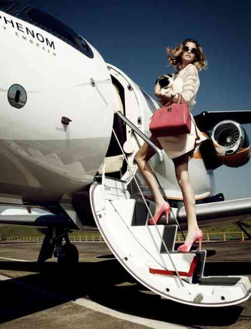 Beautiful woman with pink handbag and shoes walking up the steps onto a plane carrying a small pooch.