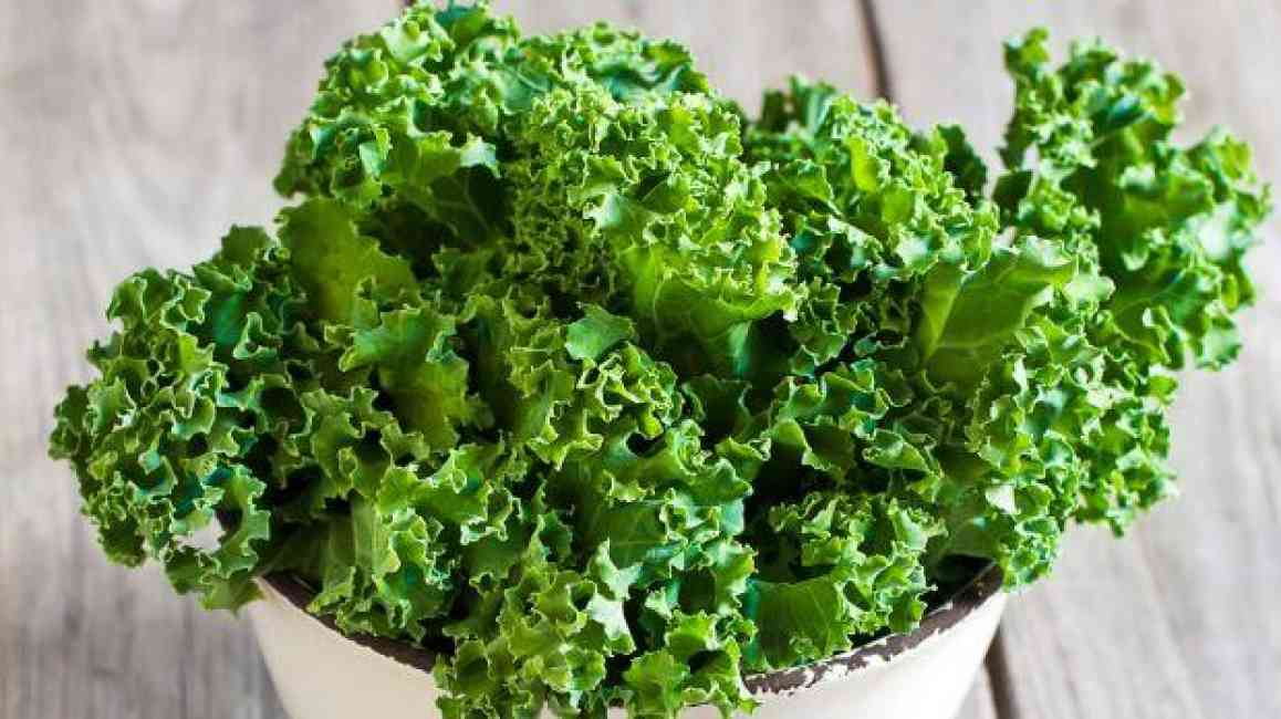 Image of green kale in a white bowl.
