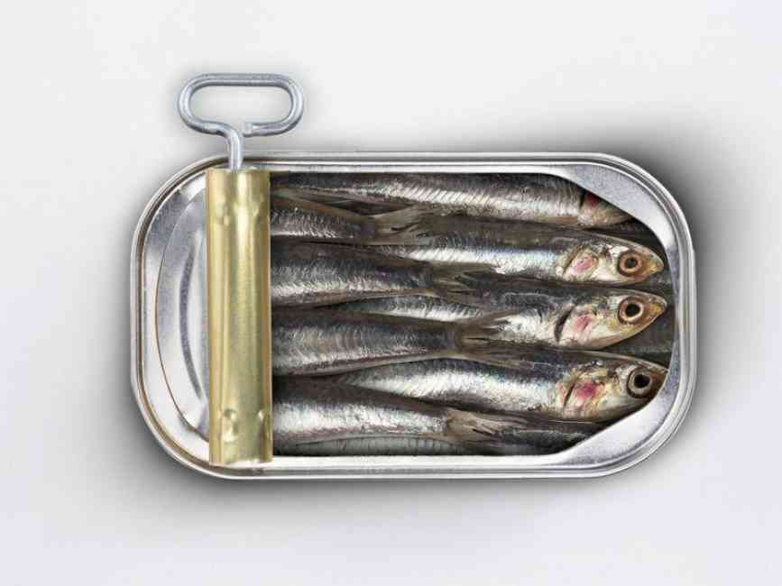Open tin can of sardines.