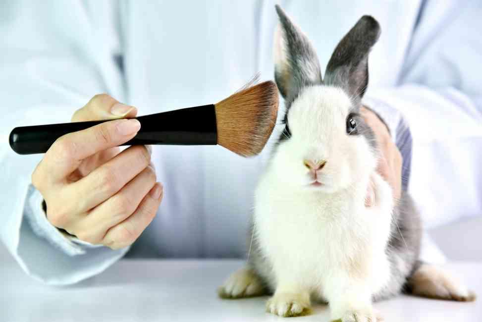 Makeup brushes with makeup